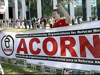 ACORN Activist Cheers
